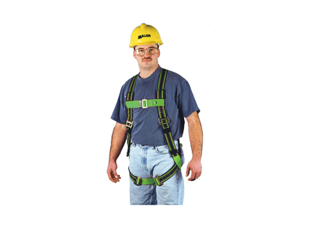 Full Body Harness, D-ring Web Extension