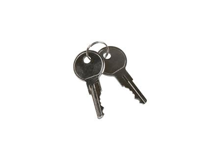 Lift Truck Power Switch Key, Pack/2