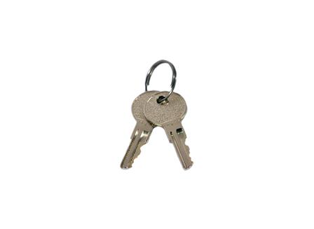 Lift Truck Power Switch Key Pack/2